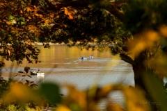 Diemelsee-im-Herbst-27