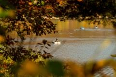 Diemelsee-im-Herbst-28