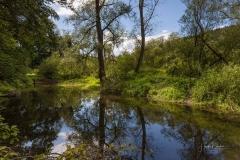 Diemelsee-im-Sommer-09