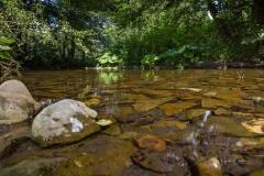 Diemelsee-im-Sommer-16