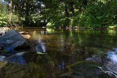 Diemelsee-im-Sommer-17