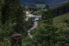 Diemelsee-im-Sommer-28