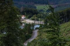 Diemelsee-im-Sommer-29