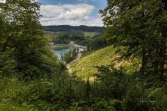 Diemelsee-im-Sommer-33