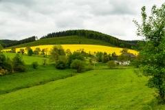 Dornheim-09
