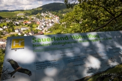 Duedinghausen-Sommer-2021_06