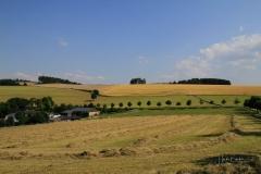 Ebbinghof-3