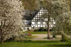 Frielinghausen-1