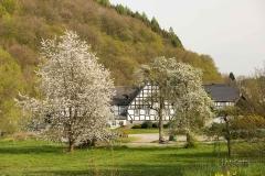 Frielinghausen-3