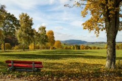 Grafschaft-Herbst-001