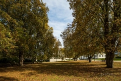 1_Grafschaft-Herbst-005