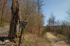 Grafschafter Frühling 9