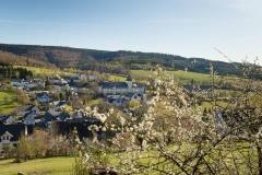 Grafschafter Frühling 2