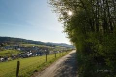 Grafschafter Frühling 10