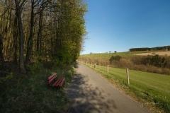 Grafschafter Frühling 11