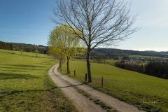 Grafschafter Frühling 14