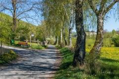 Grafschafter Frühling 21