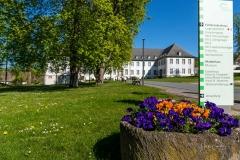 Grafschafter Frühling 28