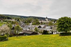 Grafschaft-Fruehjahr-05