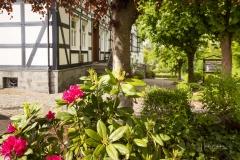 Grafschaft-Fruehjahr2019-26