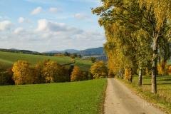 Grafschaft-Herbst-002