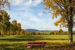 Grafschaft-Herbst-003
