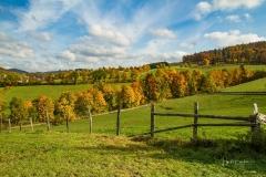 Grafschaft-Herbst-006