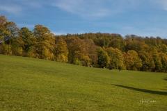 Grafschaft-Herbst-012