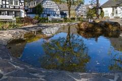 Grafschaft-im-Fruehjahr-04