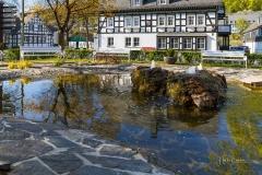 Grafschaft-im-Fruehjahr-01