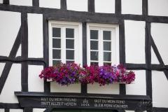 Grafschaft_Sommer_2021_31
