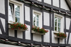 Grafschaft_Sommer_2021_52