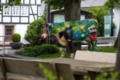 Grafschaft_Sommer_2021_57