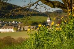 Grafschafter Fruehling 13