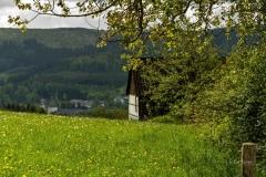 Grafschafter Fruehling (3 von 1)