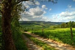 Grafschafter Fruehling (4 von 1)