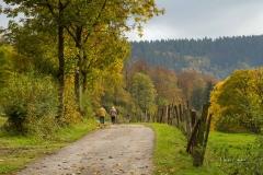 Grafschafter-Herbst-04