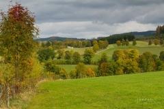 Grafschafter-Herbst-09