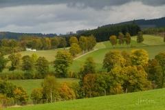 Grafschafter-Herbst-10
