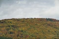 Grafschafter-Herbst-20