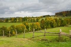 Grafschafter-Herbst-24