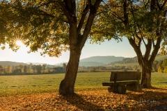 Herbst-in-Grafschaft-1