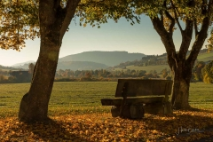 Herbst-in-Grafschaft-2