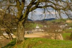 Kloster-Grafschaft-Fruehjahr-04