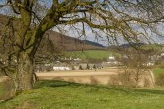 Kloster-Grafschaft-Fruehjahr-07