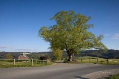 Schmallenberg-Grafschaft-01