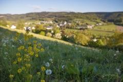 Schmallenberg-Grafschaft-03
