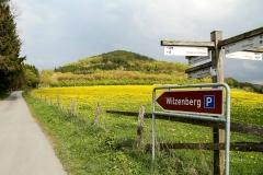 Wilzenberg-im-Frühjahr-1