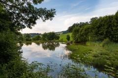 Grafschaft-Weiher-027