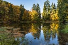 Grafschafter-Muehlenteich-im-Herbst-1